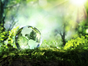 crystal globe resting on moss in a forest - environment concept ; Shutterstock ID 274566236 - Leadec Nachhaltingkeitsbericht